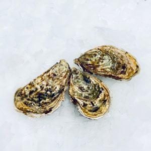 ostro ostron